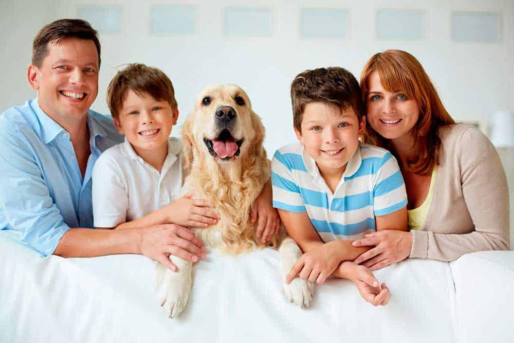 Família com animal de estimação