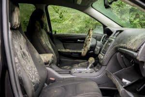 Como Funciona a Higienização de Carros Após Enchente