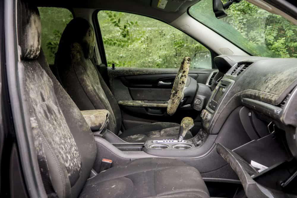 higienizacao de carros apos enchente limpeza partes internas